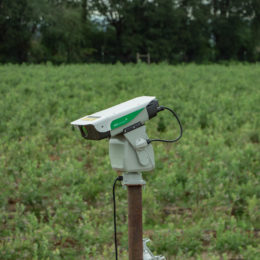 AVIX Autonomic - Blueberry Farm